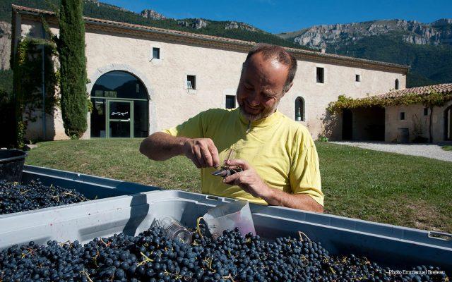Wijnmaker Jerome Cayol van Domaine de Maupas