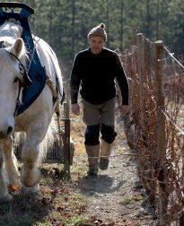 Wijnmaker Jerome Cayol met paard - Domaine de Maupas
