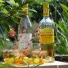 Muska Spritz met Frontignan Muscat Premier en Jacoulot Creme de Peche recept op Vinopura