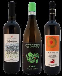 Voordeelpakket Italiaanse biologische wijnen bij VinoPura