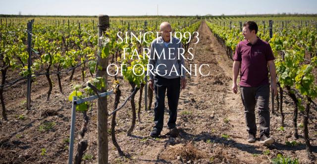 Antica Enotria biologische wijnen sinds 1993 bij VinoPura