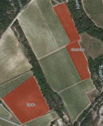 kaart van wijngaarden Duché d'Uzes wijn van Tornac